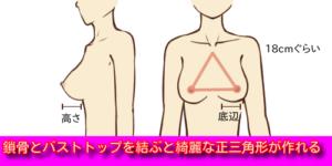 胸の形 三角形